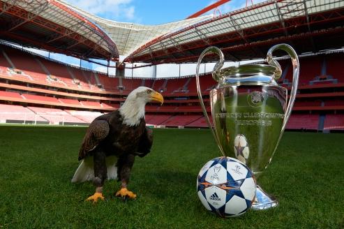 Champions League ballon adidas